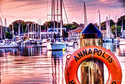 20140608-0529-7519_20_21Painterly5-Edit