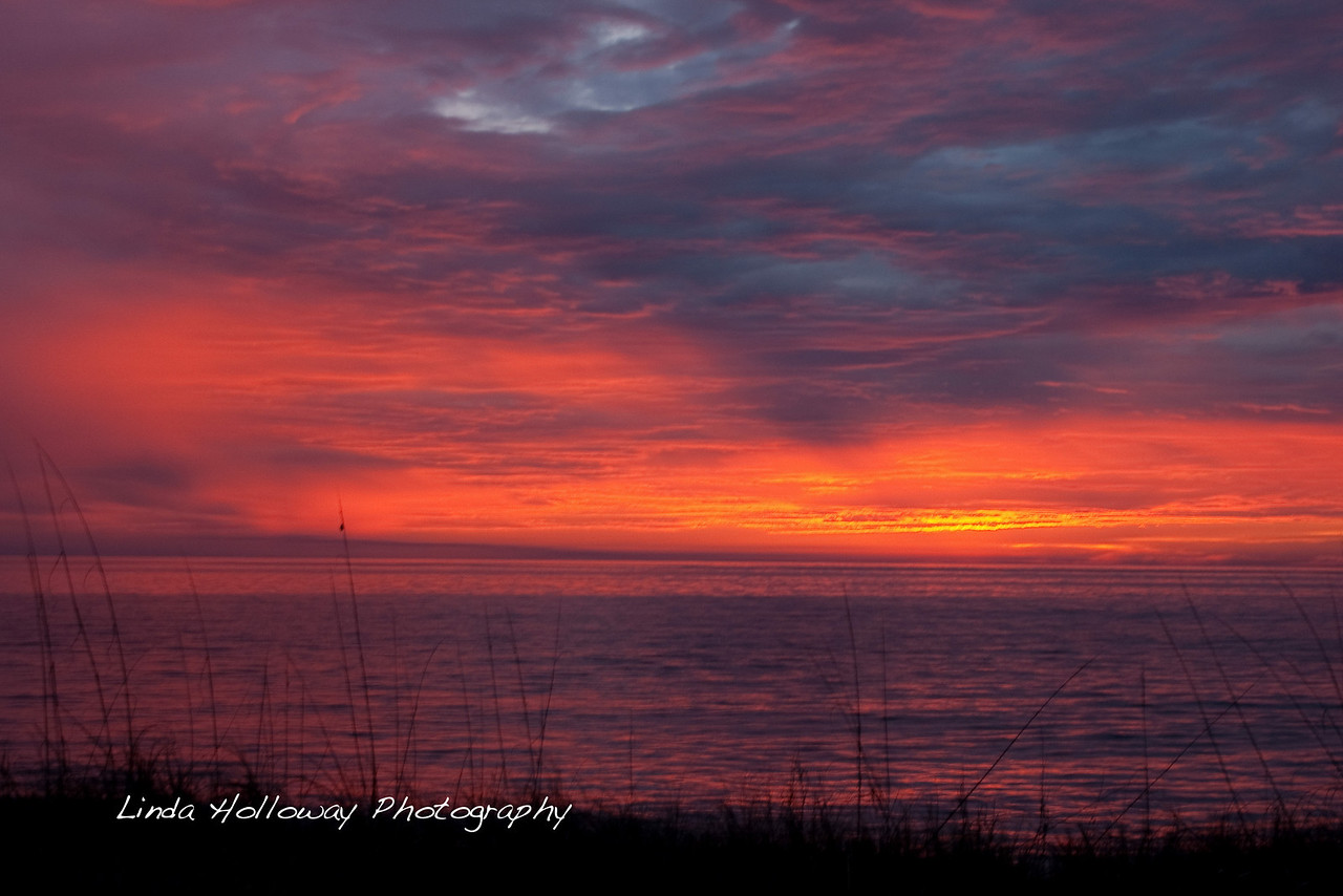 Picture # 29- January 29,2010- Sunrise at Jekyll.  What a beautiful sight.  I wished I had brought my tripod.  Some of the pictures were not sharp.