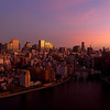 Sunrise in Tokyo on the morning Nadeshiko Japan wins 2011 Women's World Cup!
