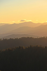 Trinity County Vista in Late Afternoon