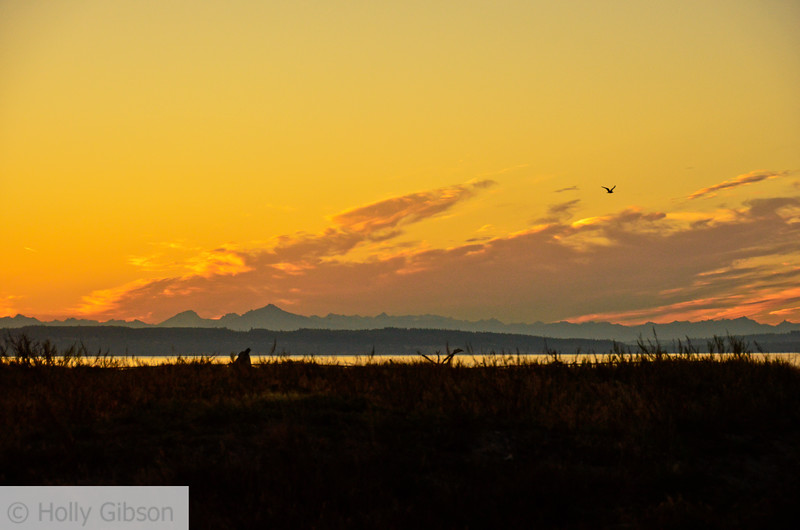 Sunrise at Fort Worden - Puget Sound - 126