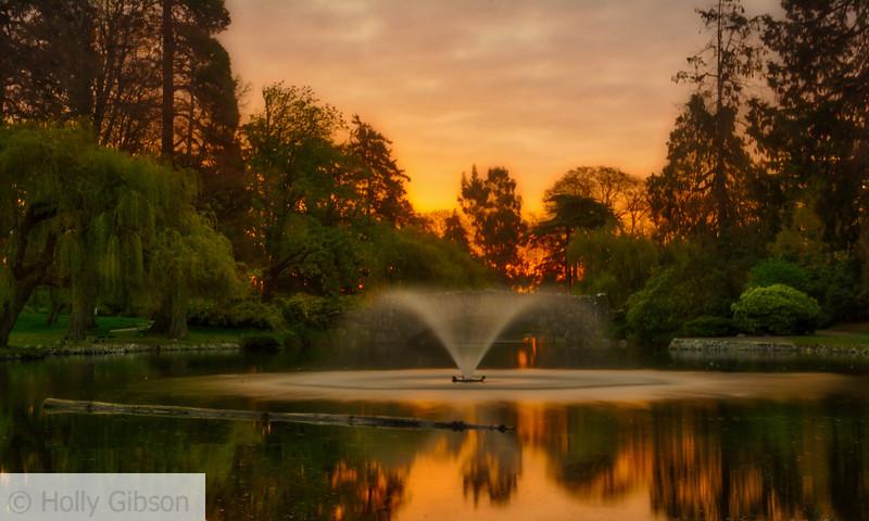 Beacon Hill Park at sunrise - Victoria, B.C.