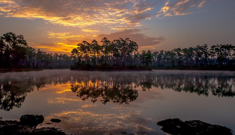 Sunrise in the Everglades..