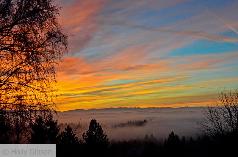 Foggy sunrise - January - 98