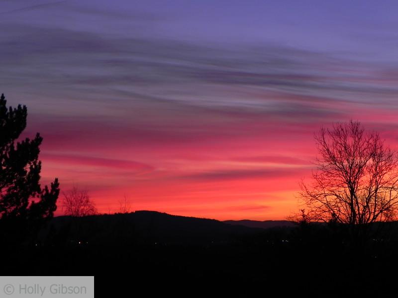 Pink sunrise - 53