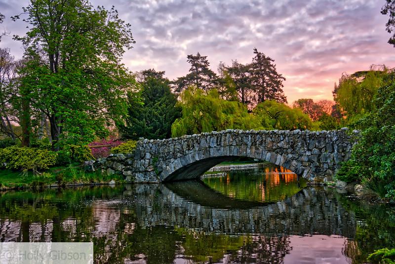 Beacon Hill Park at dawn