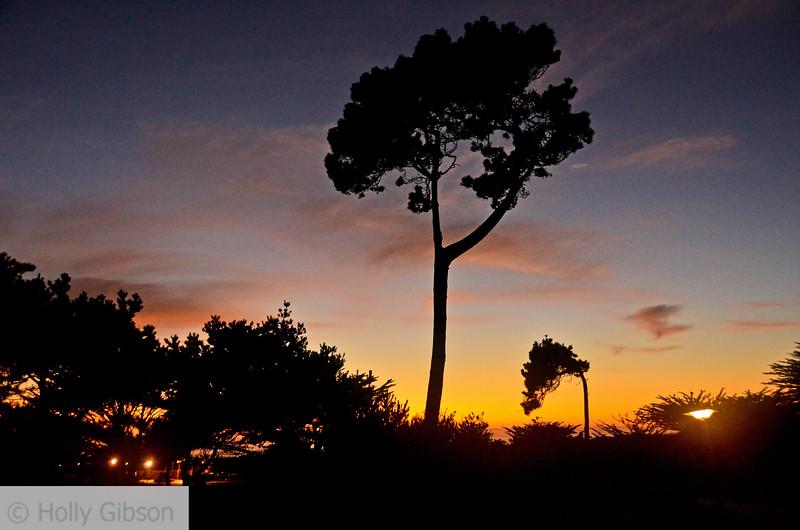 Sunset at Asilomar State Park - Monterey Peninsula, Pacific Grove - 148