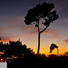 Sunset at Asilomar State Park - Monterey Peninsula, Pacific Grove - 148