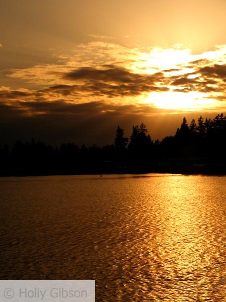 Golden sunset - taken through my sunglasses - 60