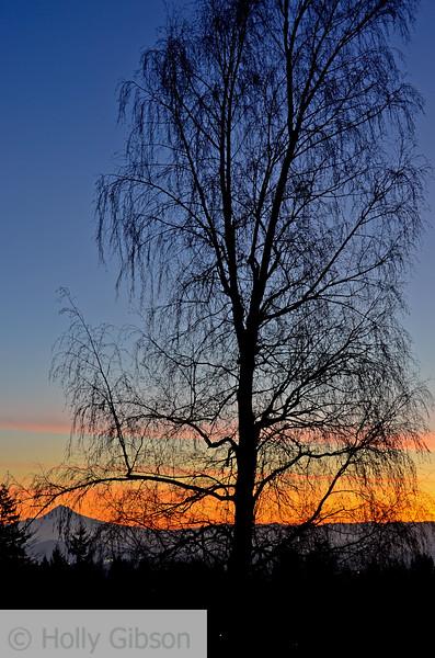 January sunrise - Mt. Hood - 92