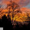 Foggy sunrise - Portland Oregon - 99