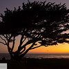Dawn on Monterey Peninsula - Pacific Grove - 142