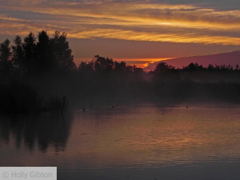 Sunrise in water fowl park - Sackville, New Brunswick - 103