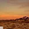 Sunset at Asilomar State Park - Monterey Peninsula, Pacific Grove - 143