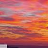 Seagulls and sunrise - 81