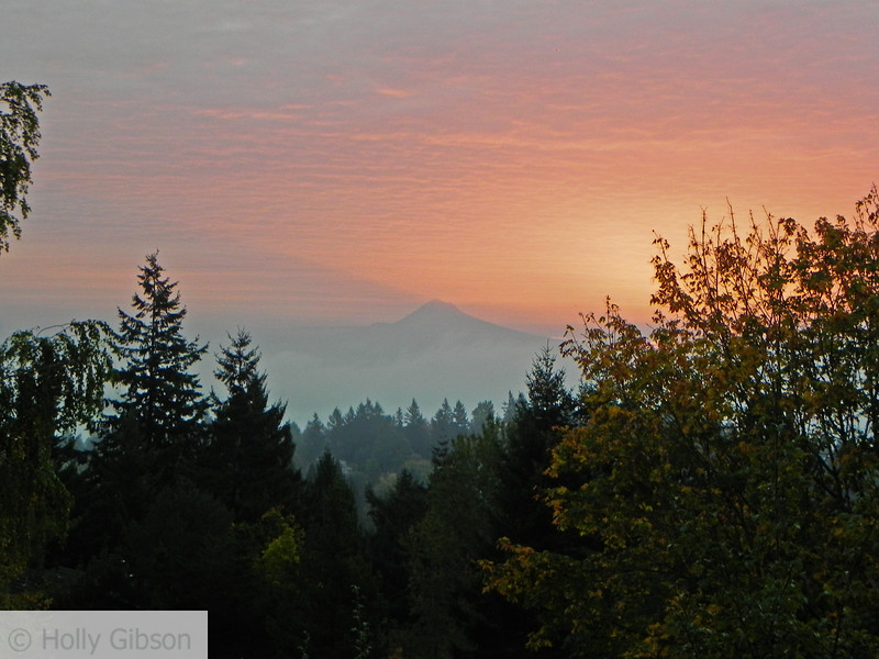 November sunrise - Mt. Hood - 87