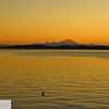 Sunrise at Fort Worden - Puget Sound - 119
