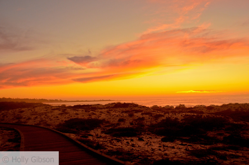Sunset at Asilomar State Park - Monterey Peninsula, Pacific Grove - 146