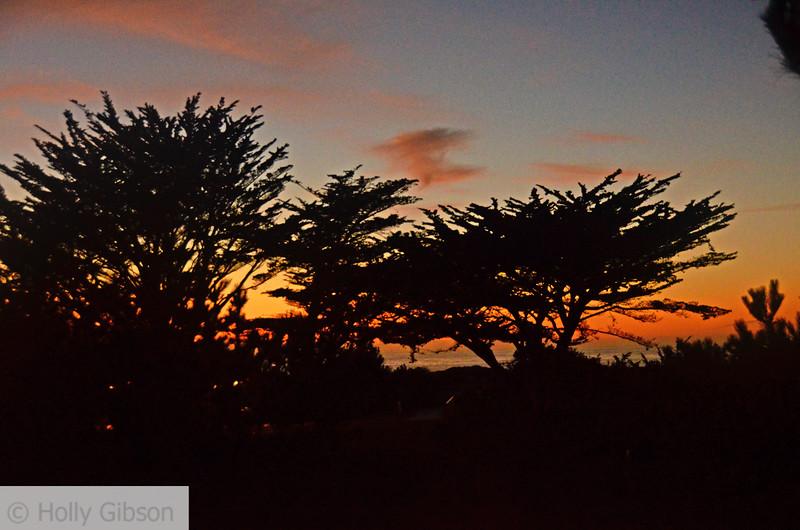 Sunset at Asilomar State Park - Monterey Peninsula, Pacific Grove - 149