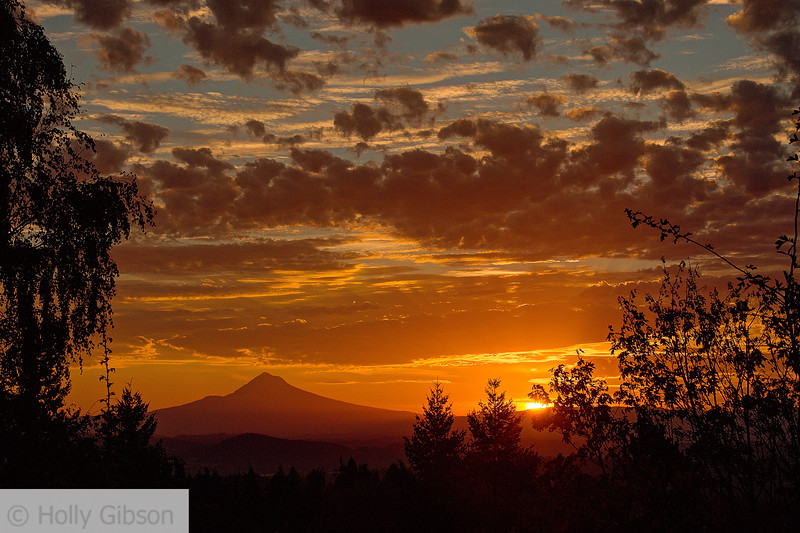 Sunrise over Mt. Hood - Portland, Oregon -226