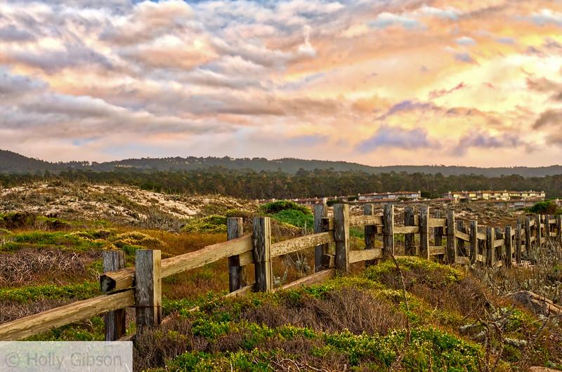 California near Monterey