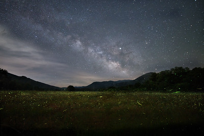 Fireflies and Milky Way
