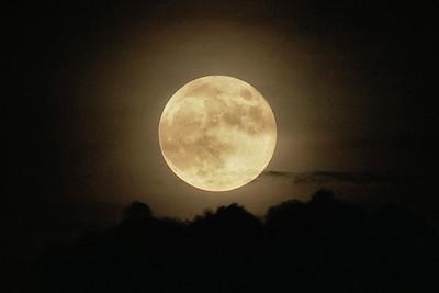 Full Buck Moonrise