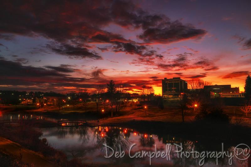 Pre-Dawn in the City