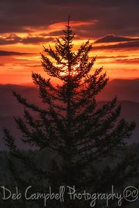 Sunrise at 6644 feet