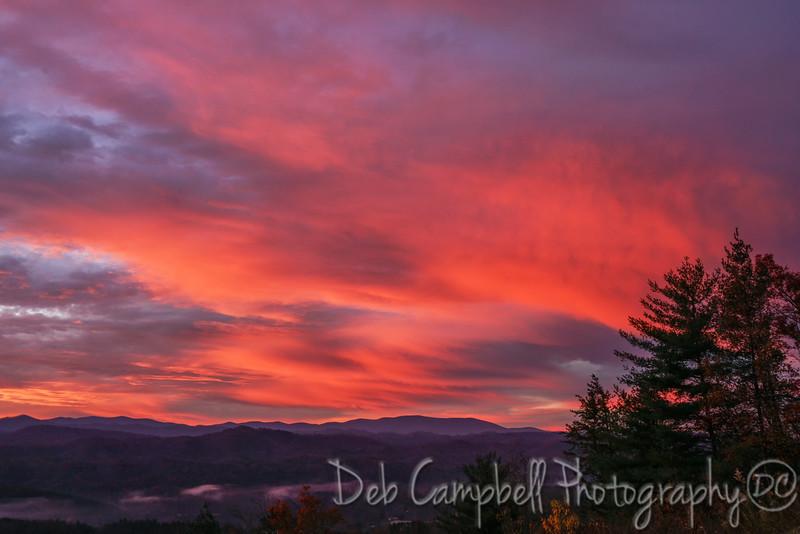 Pink Skies at Dawn