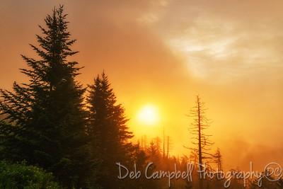 Sunrise at Clingmans Dome