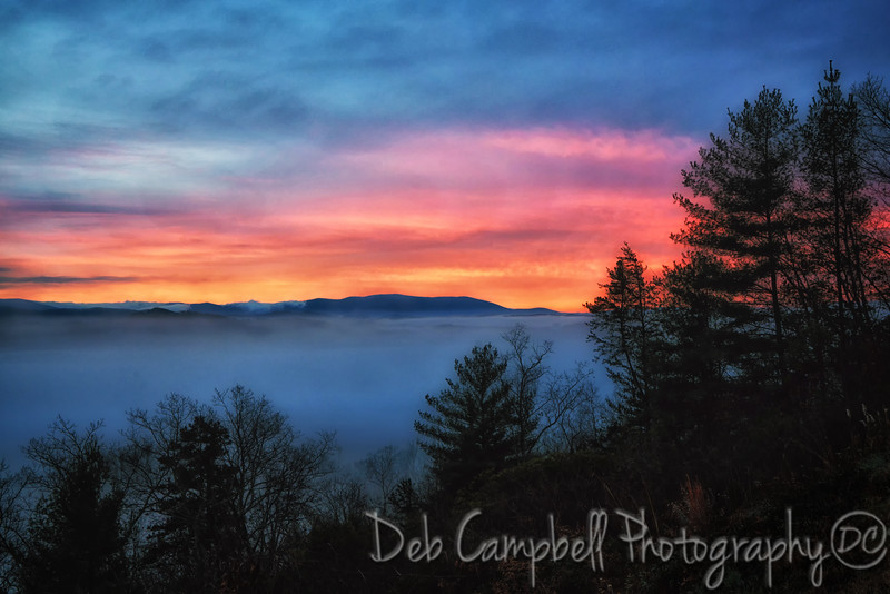 Pre-Dawn in the Smokies