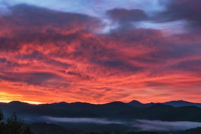 Nestor Sunrise