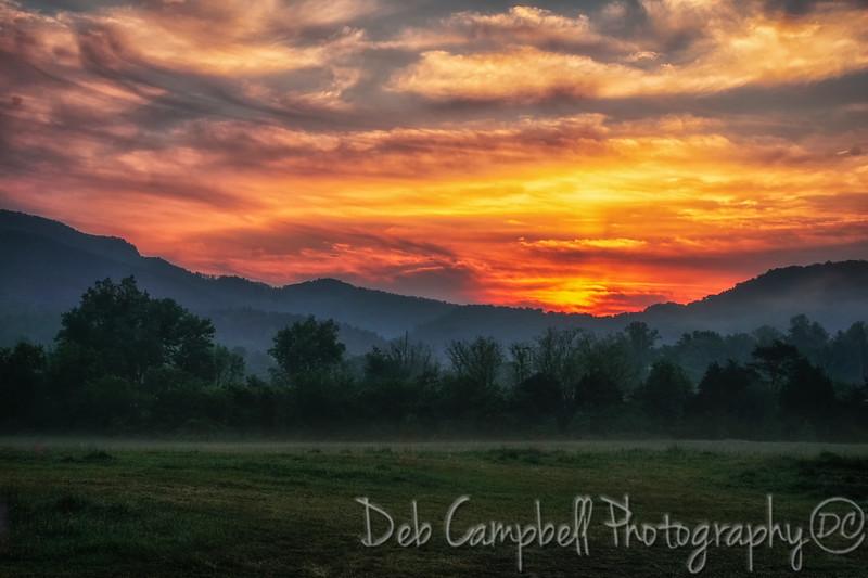 Sunrise on the Peaceful Side