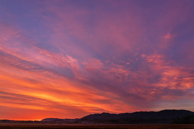 Sunrise at Ellejoy