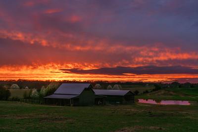 Pineview Barn Sunset