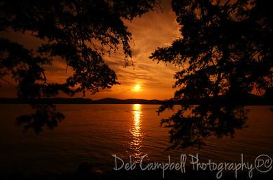 Sunset throught the pines Louisville Point Blount Co. Tn