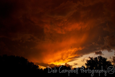 The Angry Sunset The sun setting ahead of an approaching summer storm. Maryville, Tennessee