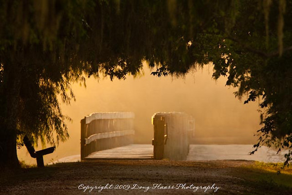 Spillway Bridge - Early morning golden light shining through a thin layer of ground fog.  I live for days like these.