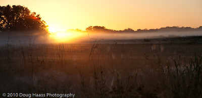 Low lying fog at sunrise