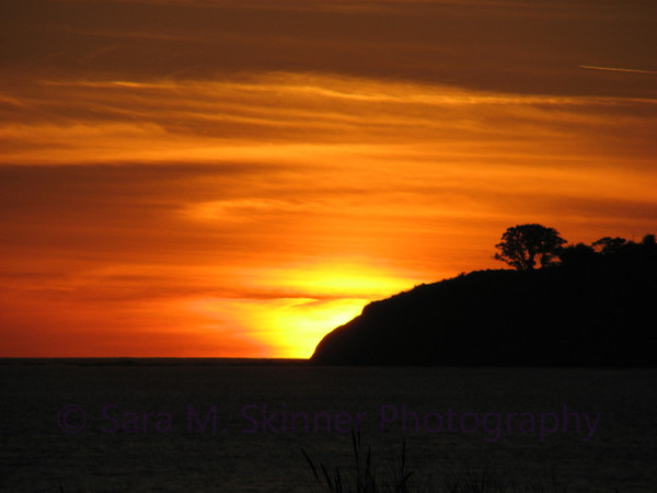 Stinson Sunset IV