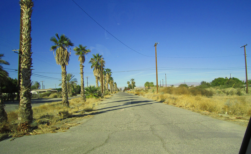 Main street in Desert Shores