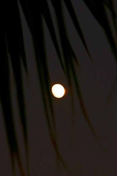 December 'Cold Moon'  in a warm climate