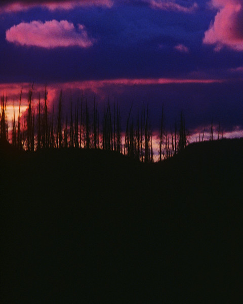 Dramatic sunset with dead timber of the Flatops in the foreground.