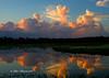Sunrise at Brazos Bend State Park, TX