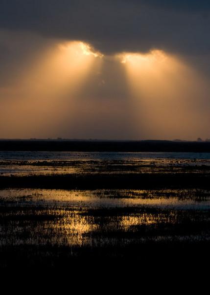 Sunrise at Anahuac NWR