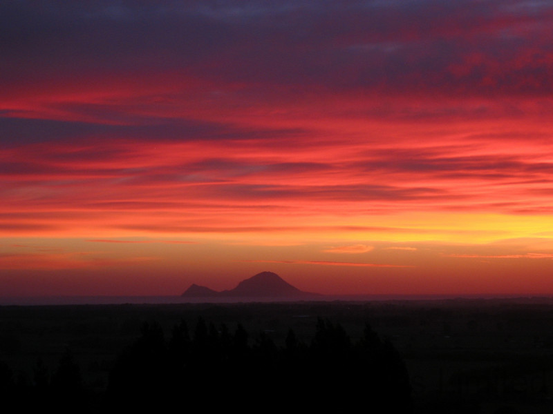 Cats woke me with present of a mouse, but that was forgotten to photograph this memorable sunrise.