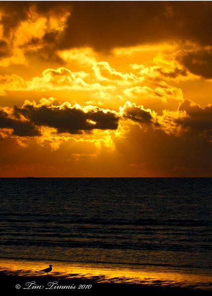 Sunrise at Bolivar Flats