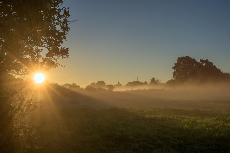 Siston Common sunrise, 26/8/16
