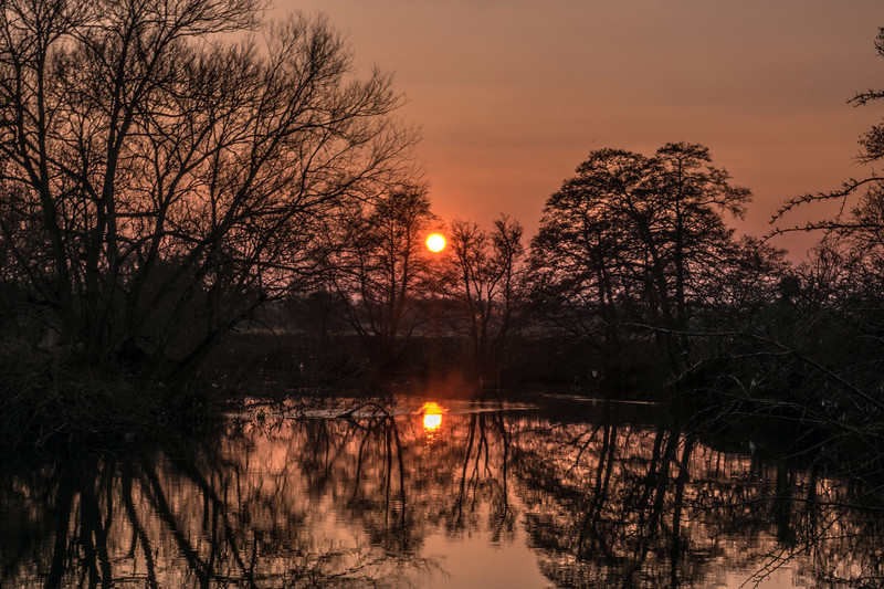River Avon 17/3/16